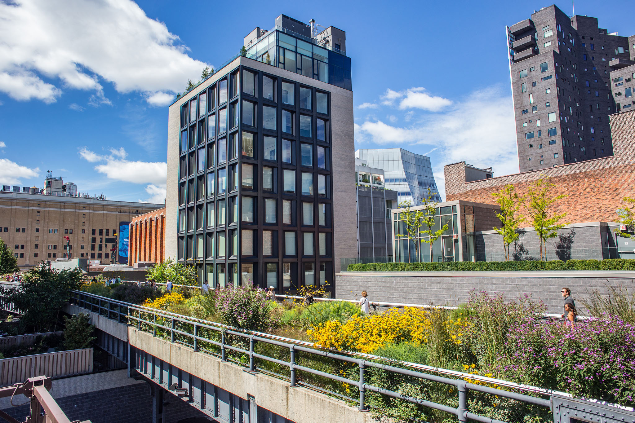 Urban revitalization: High Line Park