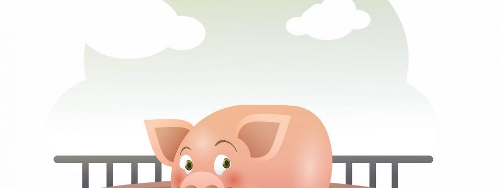 Pig 3015447 1920
