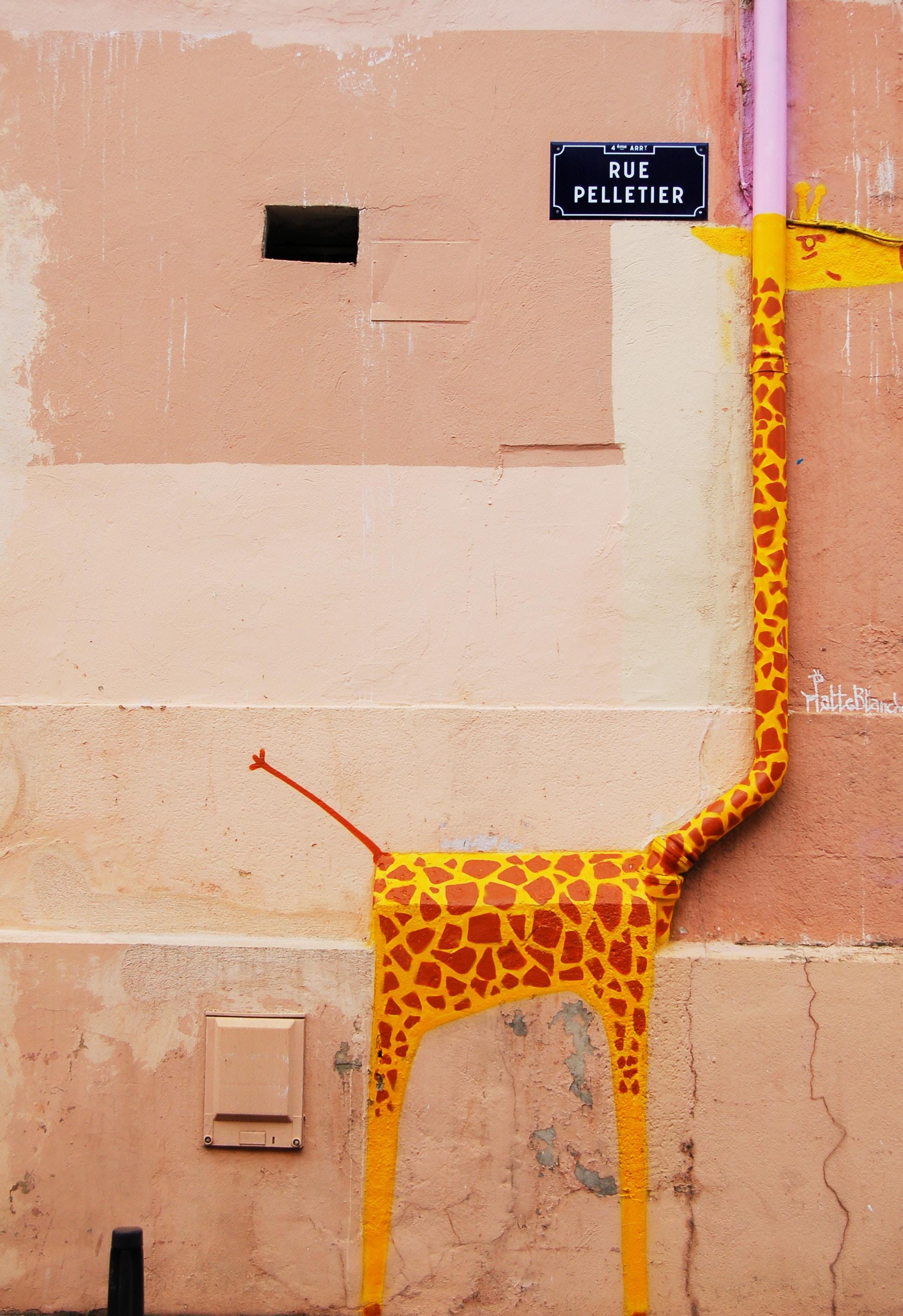 Arte Urbana Em Um Espaço Público De Lyon, França. Foto: Chris Barbalis / Unsplash.