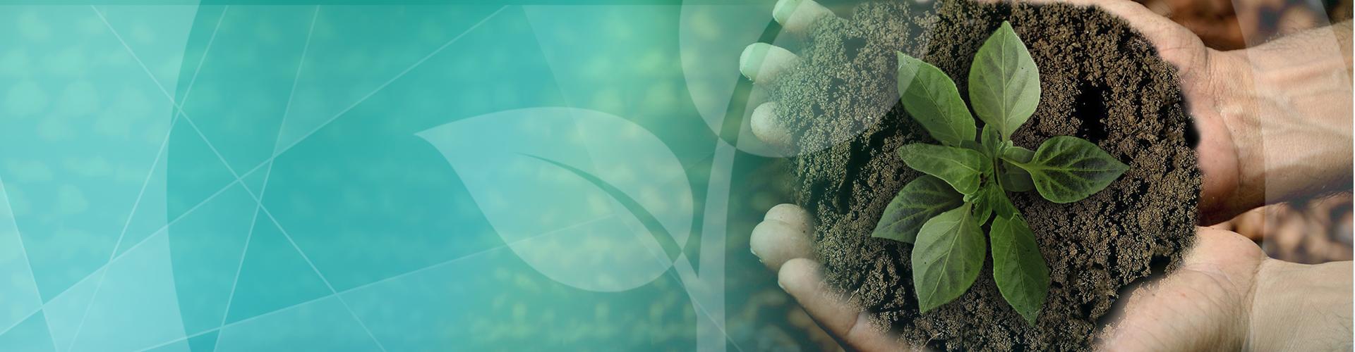 A Importância Da Agricultura Familiar E O Papel Do NITA