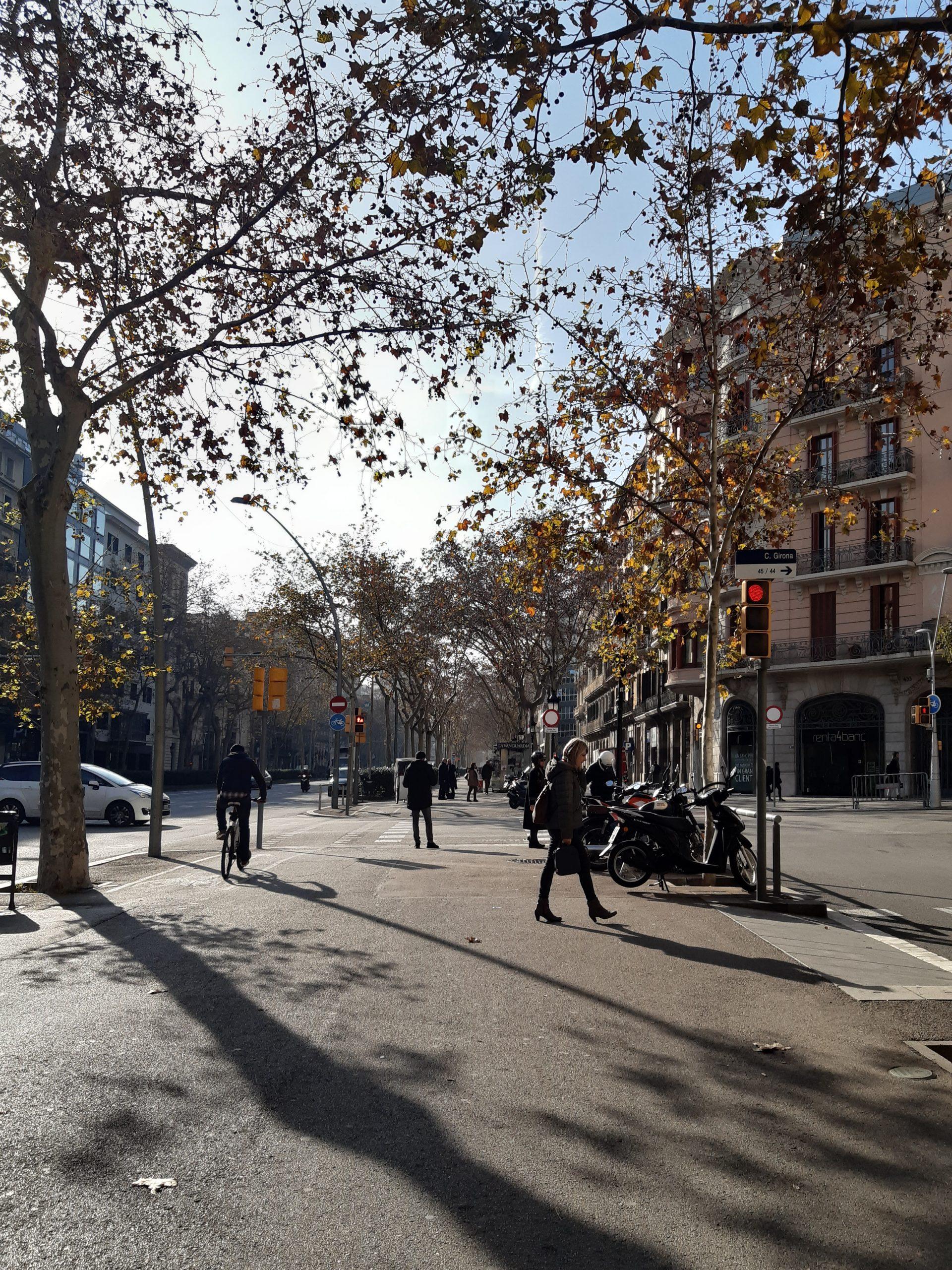 Pessoas Caminhando Em Avenida De Barcelona, Avenida Larga Com Pedestres E Ciclistas