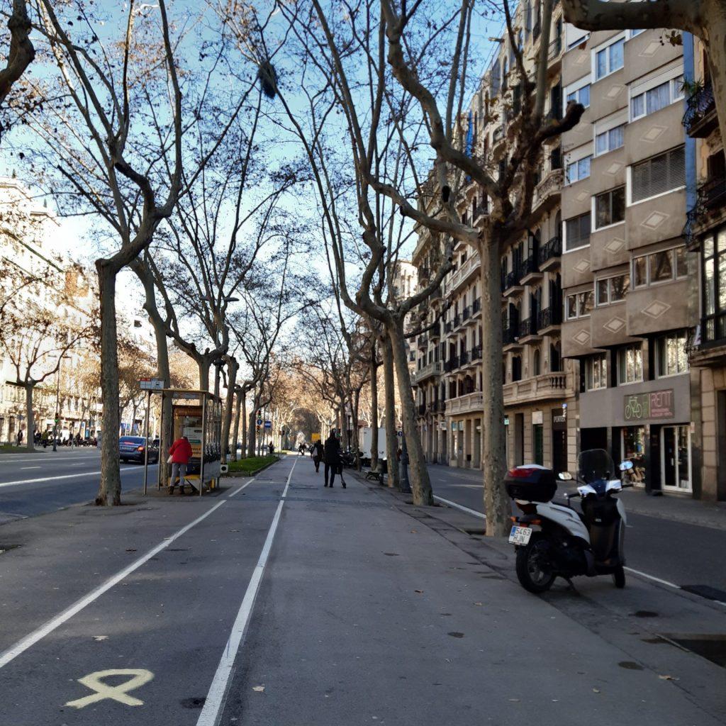 Ciclovias, Largas Calçadas E Espaços De Estar