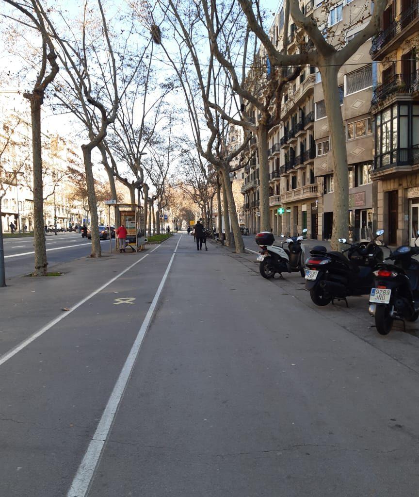 Ciclofaixas Presentes Na Cidade