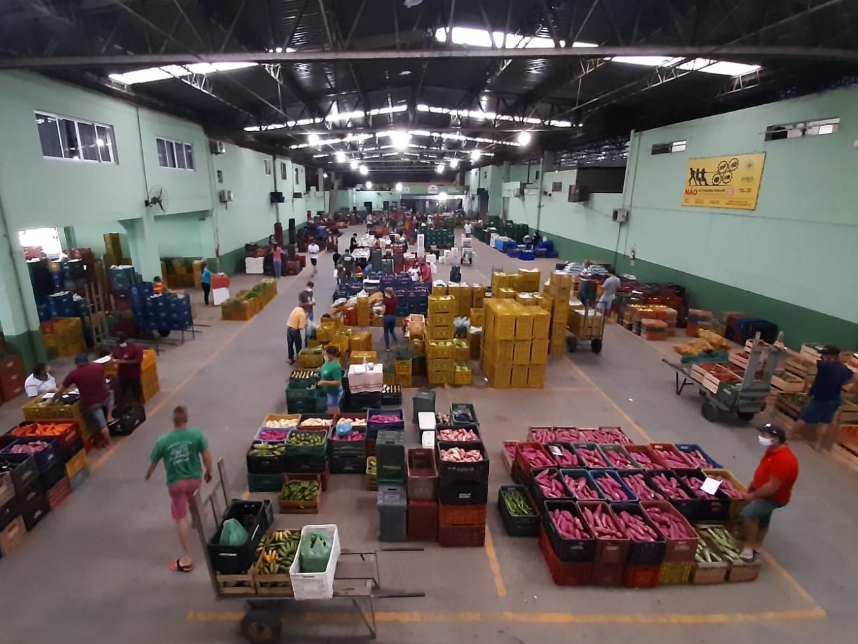 Ceasa/SC é Pioneira Na Busca De Soluções Inovadoras Para Resíduos