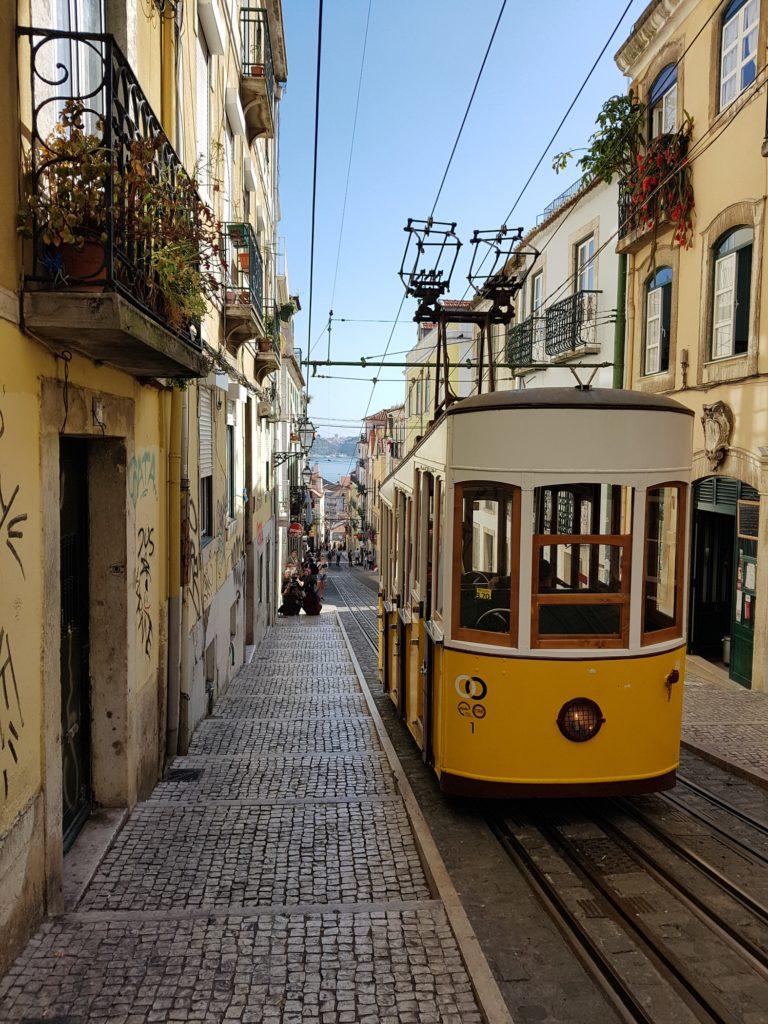 ecossistemas de startups em Portugal
